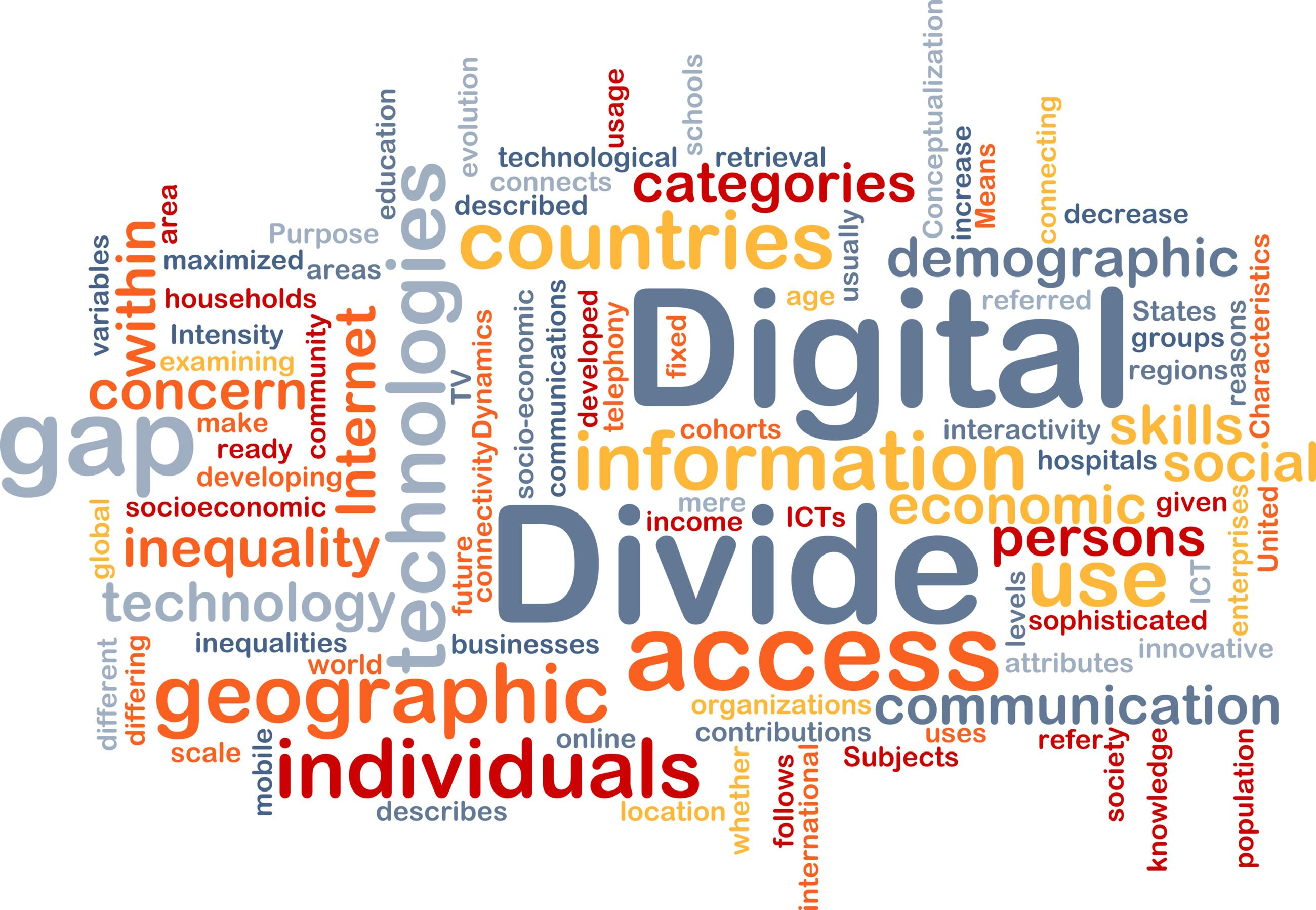 One year on: insights into digital exclusion